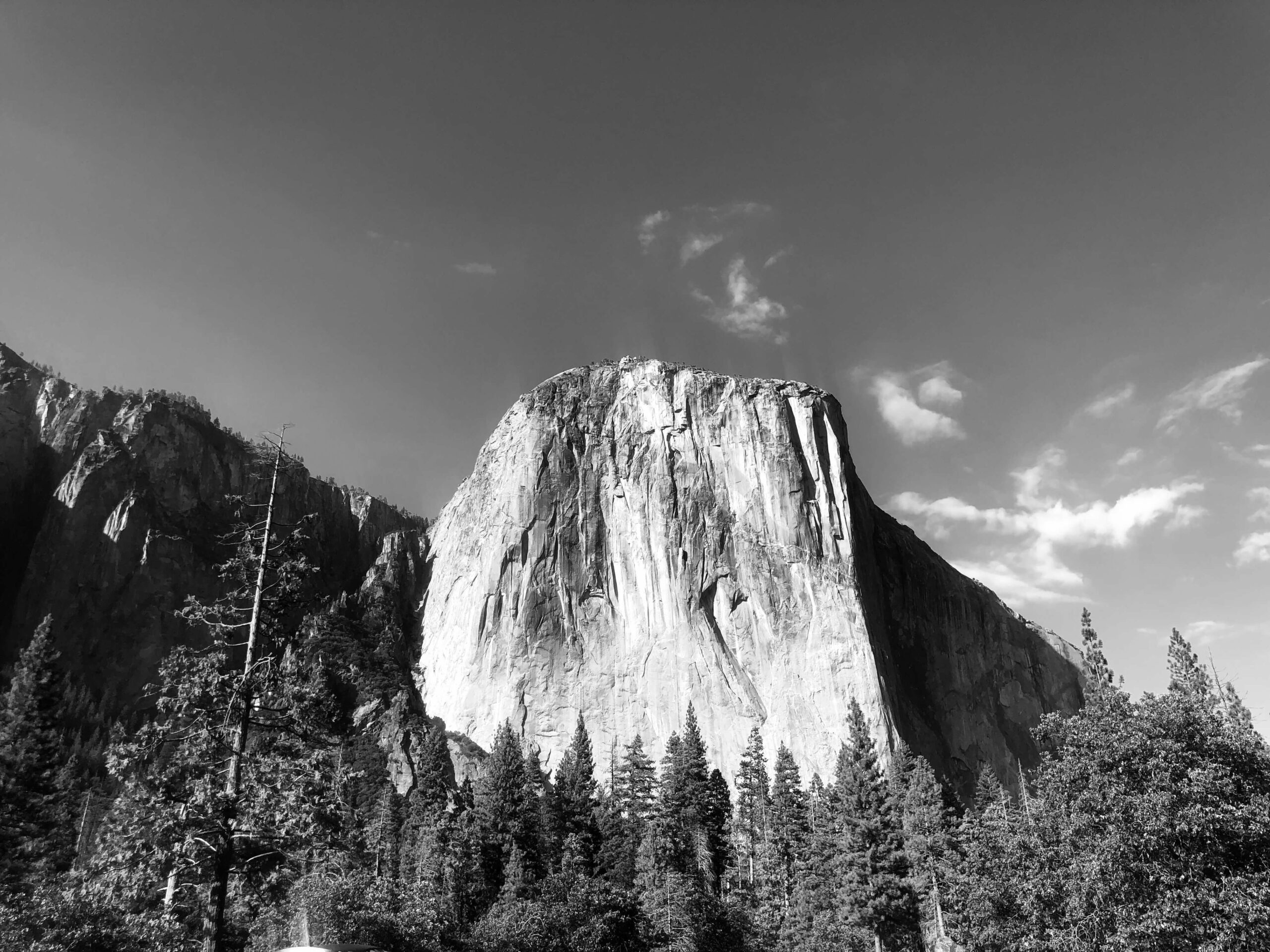 Yosemite National Park history