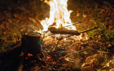 Camping Food Basics to Keep You Well-Fed and Happy