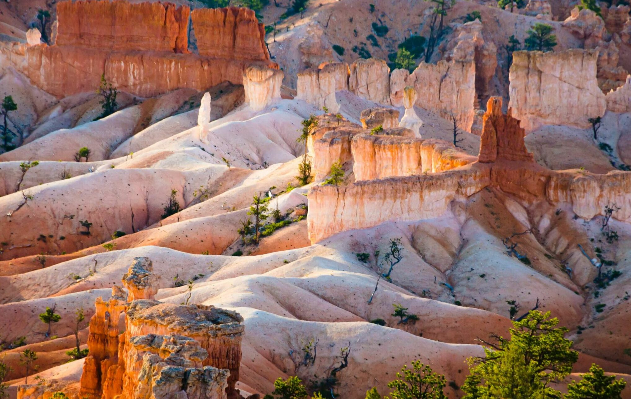 lava flowing rock formations of Bryce Canyon National Park