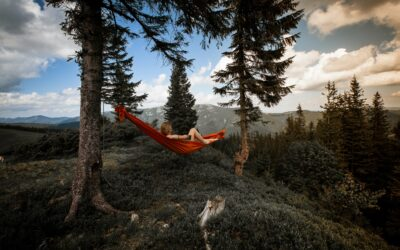 Camping Hammocks Are Just Simply Heaven